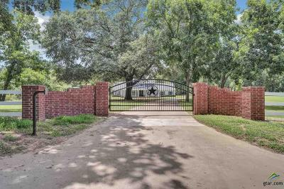 Frankston Single Family Home For Sale: 20850 County Road 4226