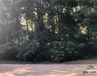Residential Lots & Land For Sale: Mary Martin Dr
