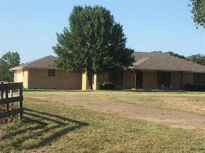 Quitman Single Family Home For Sale: 1643 County Road 4116
