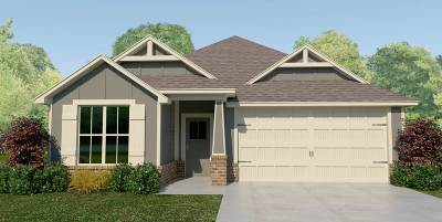 Tyler Single Family Home For Sale: 2930 Meadow Brook Trails