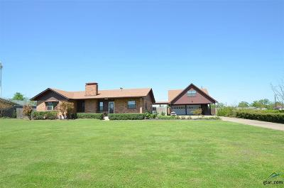Van Single Family Home For Sale: 383 E Pennsylvania Avenue
