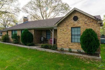 Tyler Single Family Home For Sale: 12606 Fm 3271