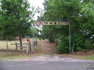 Quitman Single Family Home For Sale: 665 County Road 3250