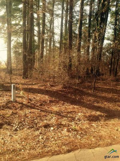 Quitman Residential Lots & Land For Sale: County Road 2157