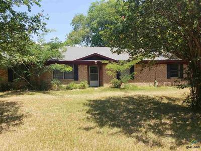 Flint Single Family Home For Sale: 3872 Fm 2813