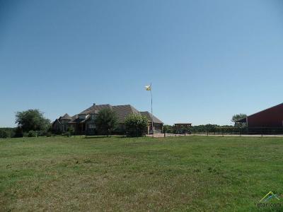 Tyler Single Family Home For Sale: 6224 Fm 344e