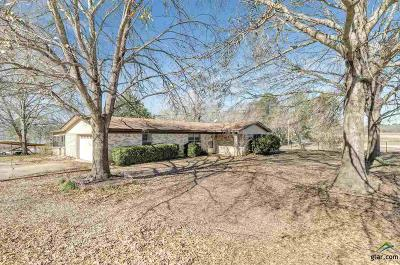 Whitehouse Single Family Home Contingent - Active: 15684 McElroy Rd