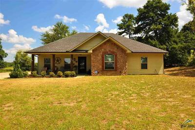 Tyler Single Family Home For Sale: 10821 E Fm 16