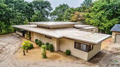 Mineola Single Family Home For Sale: 21650 C R 455