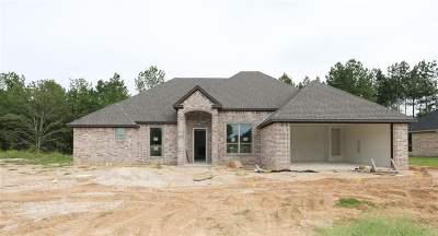 Tyler Single Family Home For Sale: 3515 Cabot Lane