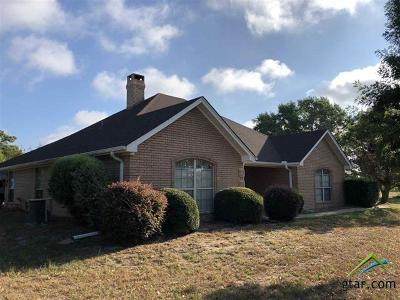 Gilmer Single Family Home For Sale: 189 Red Hawk Road