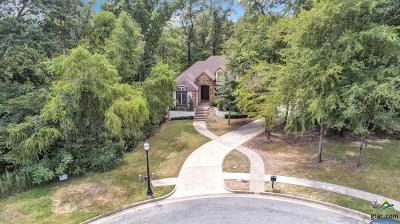 Tyler Single Family Home For Sale: 4414 Crestridge Ct