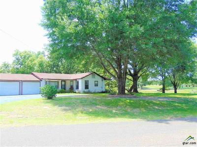 Tyler Single Family Home For Sale: 13229 County Road 1145
