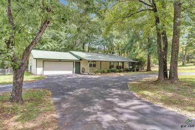 Tyler Single Family Home For Sale: 13319 Yancy Ln