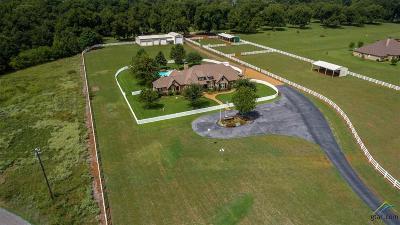 Bullard Single Family Home For Sale: 23064 County Road 121