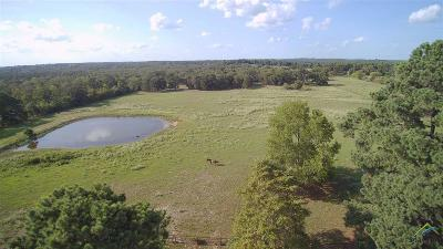 Palestine TX Single Family Home For Sale: $289,000