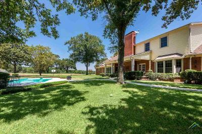 Ben Wheeler Farm For Sale: 200 Vz County Road 4813