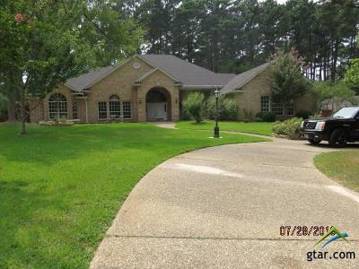 Tyler Single Family Home For Sale: 9218 Chisholm Trail