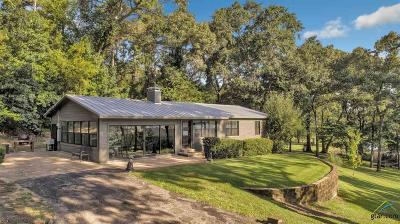 Whitehouse Single Family Home For Sale: 15807 Peninsula