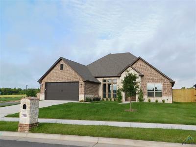 Tyler Single Family Home For Sale: 7291 Dubose Creek