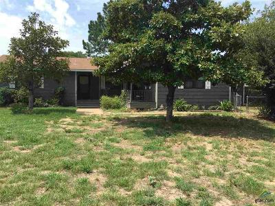 Ben Wheeler Single Family Home For Sale: 555 Vz County Road 4714