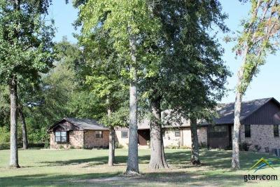 Whitehouse Single Family Home For Sale: 10506 County Road 2180