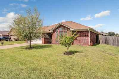 Flint Single Family Home For Sale: 11238 Twin Spires