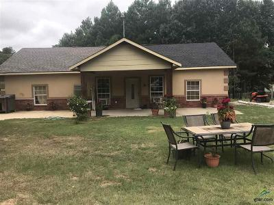 Tyler Single Family Home For Sale: 6543 County Road 492