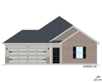 Tyler Single Family Home For Sale: 461 Omaha Ave