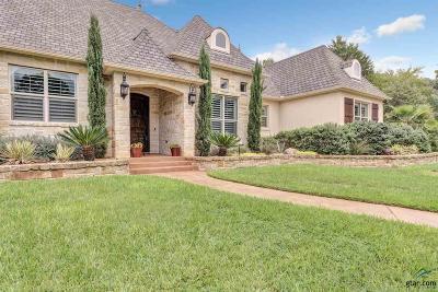 Tyler Single Family Home For Sale: 4719 Cascades Shoreline Dr
