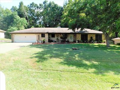 Tyler Single Family Home For Sale: 408 Ulster