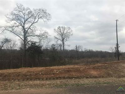 Tyler Commercial For Sale: 11155 E Interstate 20