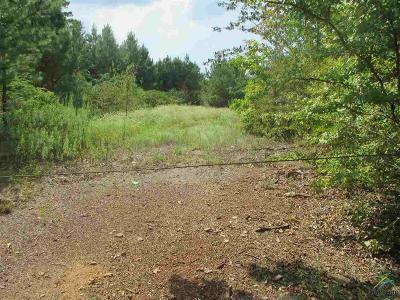Acreage For Sale: 16xxx () County Road 2191 (Oscar Burkett Rd.)