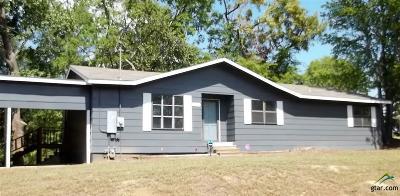 Mineola Single Family Home For Sale: 224 Elliott