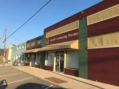 Lindale Commercial For Sale: 105 W Hubbard Street