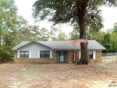 Tyler Single Family Home For Sale: 11073 County Road 1223