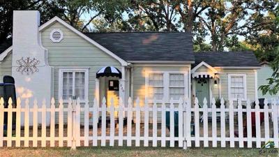 Canton Single Family Home For Sale: 1020 S Buffalo