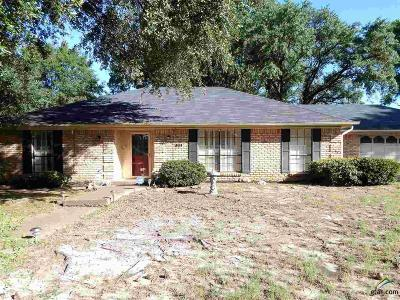 Tyler Single Family Home For Sale: 709 W Rieck Road