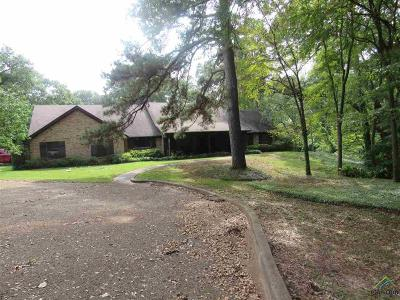 Big Sandy Single Family Home For Sale: 602 N Tyler