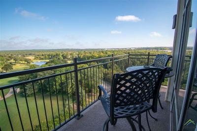 Tyler Condo/Townhouse For Sale: 2801 Wexford Drive Unit 705