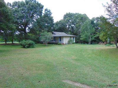 Whitehouse Single Family Home For Sale: 19522 County Road 2171