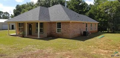 Tyler Single Family Home For Sale: 12867 County Road 463