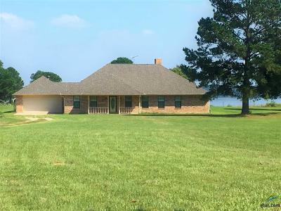 Quitman TX Single Family Home For Sale: $385,000