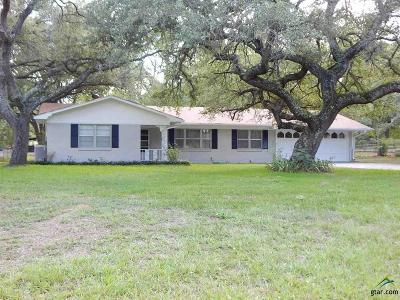 Upshur County Single Family Home For Sale: 3058 E State Hwy 154
