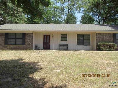 Tyler Single Family Home For Sale: 10733 County Road 1223