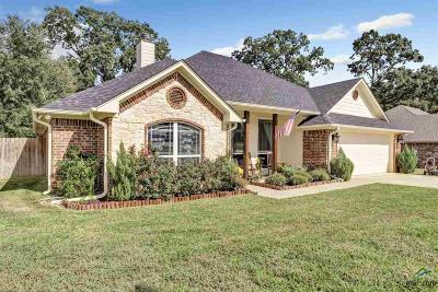 Tyler Single Family Home For Sale: 13536 Country View