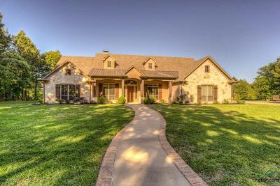 Tyler Single Family Home For Sale: 12461 Fm 848