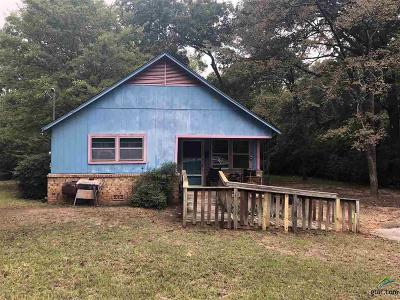 Tyler Single Family Home For Sale: 803 W 24th St