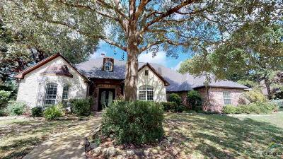 Tyler Single Family Home For Sale: 2040 Dressage Ln