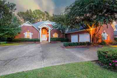 Tyler Single Family Home For Sale: 6810 La Costa Drive